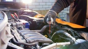pucharu samochodowy dźwignięcie podnosząca nafciana zastępstwa usługa Mechanika mężczyzny opryskiwanie na silniku zbiory