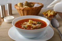 pucharu warzywo zupny pomidorowy Fotografia Stock