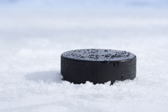 Puck closeup. A black puck on the ice Stock Image