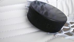 Puck in hockey goalie vanger Royalty-vrije Stock Afbeelding