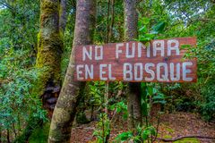 PUCON, CHILE - SEPTEMBER, 23, 2018: Close up of wooden informative sign of no smoking in the forest in Pucon recreative. Place in Chile stock images