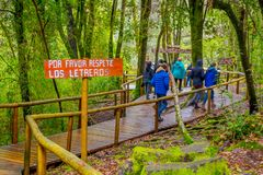 PUCON, CHILE - SEPTEMBER, 23, 2018: Outdoor beautiful nature of tourists walking in the forest with some wooden fences. At each side at Pucon, Chile royalty free stock image