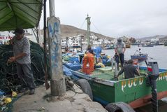 Pucusana, Peru - Juni 17, 2017: De Peruviaanse visser in een inktvis blokkeert in Pucusana-pijler in een bewolkte ochtend in toer stock afbeelding
