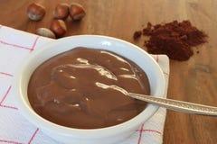 Pudín de la avellana del chocolate imagen de archivo