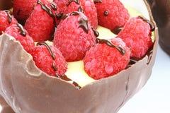 Pudín y fruta del tazón de fuente del chocolate fotos de archivo libres de regalías