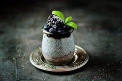 Pud?n de la semilla de Chia con la miel, los ar?ndanos congelados y las zarzamoras Postre org?nico delicioso y sano foto de archivo