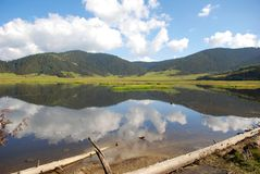 pudachu национального парка фарфора Стоковая Фотография
