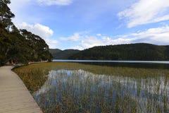 Pudacuo National Park, Shangri-La Royalty Free Stock Photo