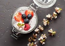 Pudding avec des graines de chia, et baies fraîches photographie stock libre de droits