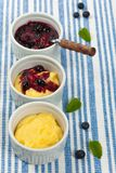 Pudding with Blueberry Stock Images