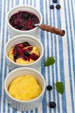 Pudding with Blueberry Royalty Free Stock Photography
