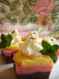 Pudding cake. Delicious pudding cakes with strawberry, vanilla and chocolate pudding and beautiful melting cream decoration on top together with mint leaves Stock Image