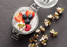 Pudding with chia seeds, and fresh berries Royalty Free Stock Photography