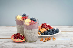 Pudding with chia seeds Royalty Free Stock Images