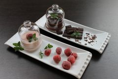 Pudding with chocolate crumbs and strawberry pudding with frozen strawberries and mint in a glass cream bowls Stock Photo