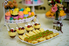 Pudding and cupcakes Stock Images