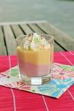 Pudding de fraise et de vanille Photographie stock libre de droits