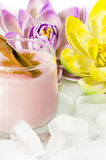 Pudding Dessert Royalty Free Stock Image