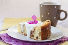 Pudding doux de fromage blanc avec des raisins secs Image libre de droits