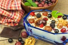 Pudding med havremjölet och den svarta vinbäret Sommarfriskhet av ny frukt sund snacking arkivbilder