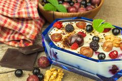 Pudding with oatmeal and black currant. Summer freshness of fresh fruit. Healthy snacking. stock images