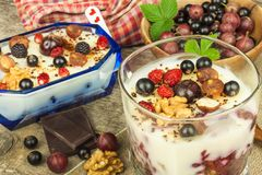 Pudding with oatmeal and black currant. Summer freshness of fresh fruit. Healthy snacking. royalty free stock photography