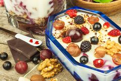 Pudding with oatmeal and black currant. Summer freshness of fresh fruit. Healthy snacking. royalty free stock photos
