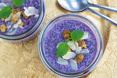 Pudding sain de chia de myrtille de nourriture de tendance Photos libres de droits