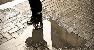In the puddle Royalty Free Stock Photography