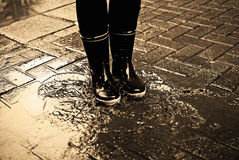 In a puddle Royalty Free Stock Photos