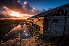The Puddle & the Barn. An old barn in poor state Royalty Free Stock Photos
