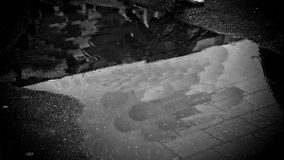 Puddle with circular movements in the water. In a puddle we see water moving in circular motions, creating effects similar to sound waves stock video footage