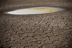 Puddle on dry land. A puddle, the only water left after a severe drought due to global warming Stock Photo