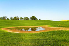 Puddle on the field. Royalty Free Stock Photo