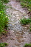 Puddle on a garden path in the rain Stock Images
