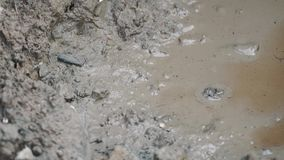Puddle of grey mud, water and dirt stock footage