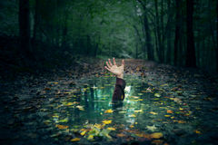 Free Puddle Hand Royalty Free Stock Photography - 60266737
