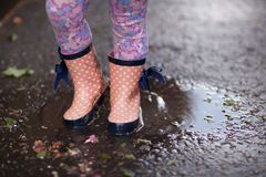 In the puddle Royalty Free Stock Photo