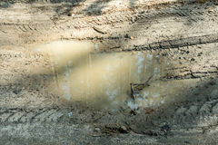 Puddle in the mud. With traces Stock Image