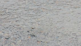 Puddle on the pavement in the rain. Drops fall into the water and diverge circles. Interference of waves. April rain. The first sp. Ring rain in the city. Water stock video footage