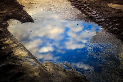 Puddle reflection Royalty Free Stock Photos