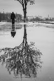 Puddle reflection of tree, walking person, black and white photo Royalty Free Stock Images