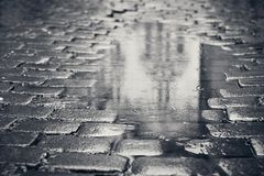 Puddle on the street Stock Photography