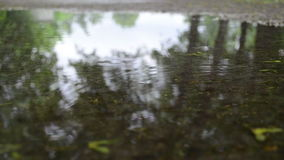 Puddle water rain drop. Puddle pool water and air bubbles forming and blow rippling stock video footage
