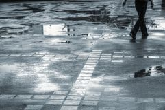 Puddles Royalty Free Stock Image