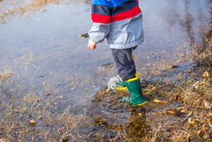 Puddles Royalty Free Stock Photo