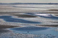 Puddles at low tide Stock Photography