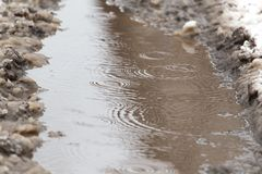 Puddles from the rain in winter.  Royalty Free Stock Photo