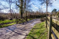 Puddles on the road. Muddy country road through the park through the wooden gate, there are wooden fences on both sides of the road, puddles on the road stock photo