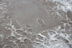 Puddles and slushy snow with footprints. Royalty Free Stock Photos